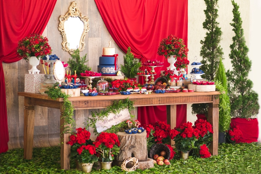 Festa Branca de Neve Luxo
