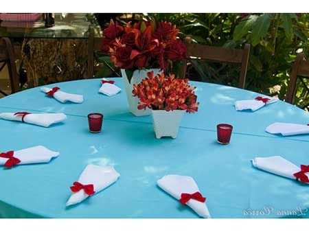 decoração de casamento simples Com TNT