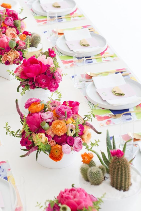 festa cactos E Flores